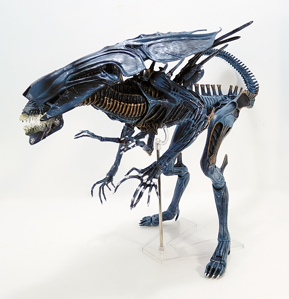 Aliens: Deluxe Alien Queen by NECA | FigureFan Zero
